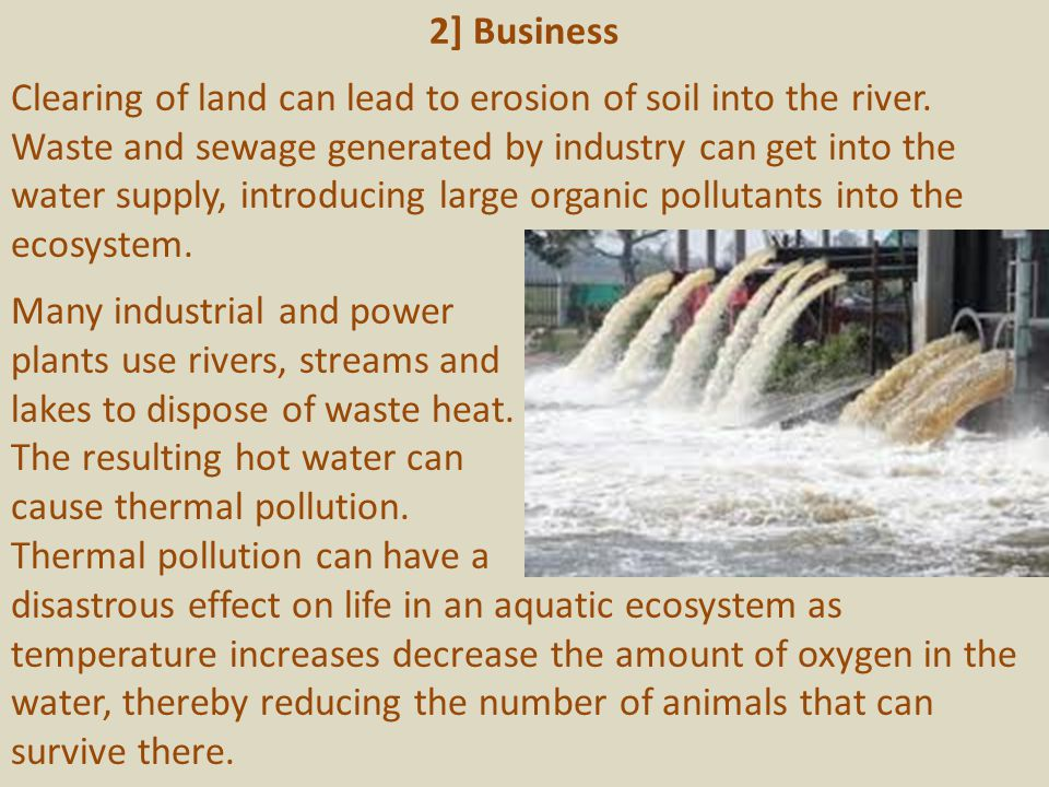 2] Business Clearing of land can lead to erosion of soil into the river.
